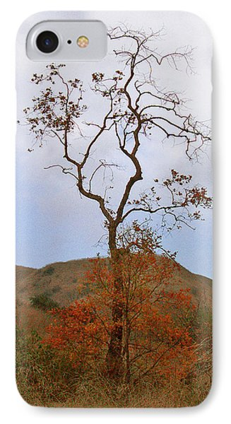 Chino Hills Tree Phone Case by Ben and Raisa Gertsberg