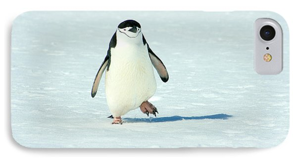 Chinstrap Penguin Running IPhone Case