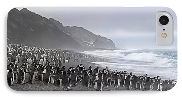 Chinstrap Penguins Marching To The Sea IPhone Case by Panoramic Images