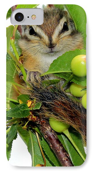 IPhone Case featuring the photograph Chip Or Dale by Barbara Chichester