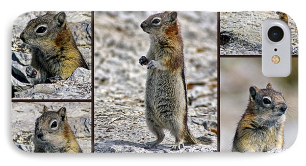 Chipmunk Collage IPhone Case by Lynn Bolt