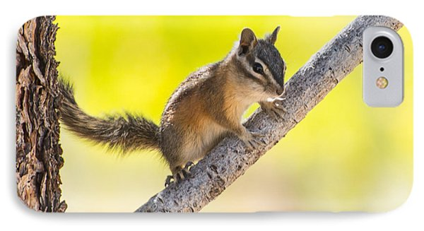 IPhone Case featuring the photograph Chipmunk In Tree by Janis Knight