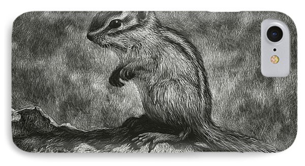 Chipmunk On The Rocks IPhone Case