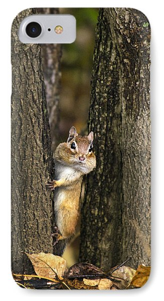 Chipmunk Peek A Boo Phone Case by Christina Rollo