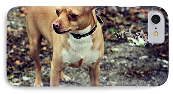 Chiwawa Pitbull Mix IPhone Case by Wilhemenia Williams