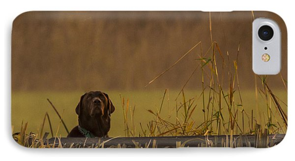 Chocolate Lab Hunting Ducks IPhone Case by Jean Noren
