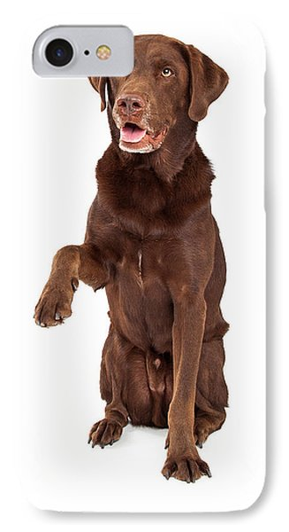 Chocolate Labrador Paw Extended IPhone Case