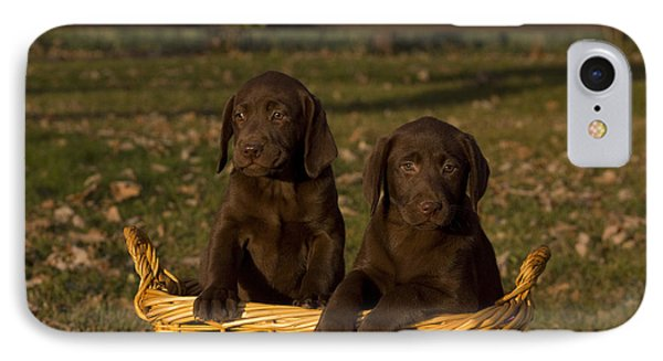 Chocolate Labrador Retriever Pups Phone Case by Linda Freshwaters Arndt