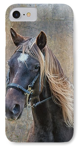 Chocolate Rocky Mountain Horse Phone Case by Peter Lindsay