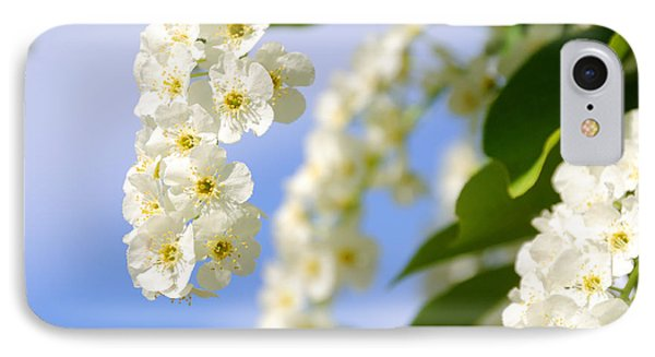 Choke Cherry In Bloom Phone Case by Gary Whitton