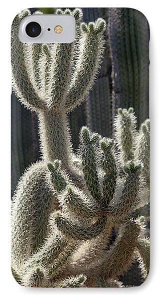 Opuntia Bigelovii iPhone 7 Case - Cholla Cactus Arizona by Patrick McGill