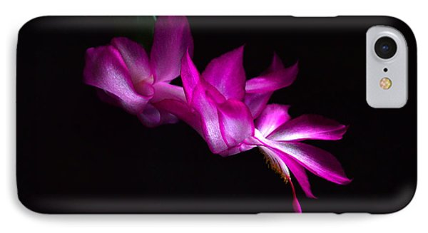 IPhone Case featuring the photograph Christmas Cactus Blossom by Bill Swartwout