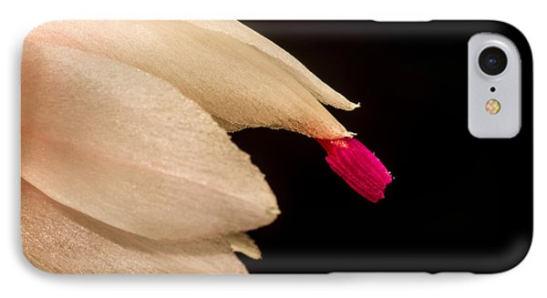 Christmas Cactus Flower Phone Case by Mitch Shindelbower