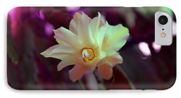 IPhone Case featuring the photograph Christmas Cactus Flower by Ramona Matei
