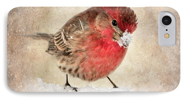 Christmas Card 9 Phone Case by Betty LaRue
