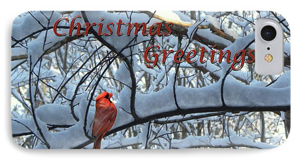 IPhone Case featuring the photograph Christmas Card - Christmas Greeting by Larry Bishop