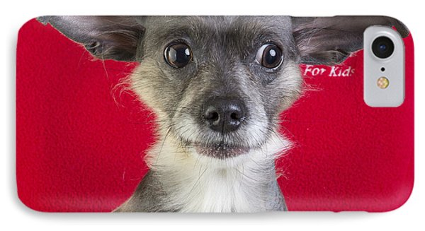 Christmas Dog Phone Case by Edward Fielding