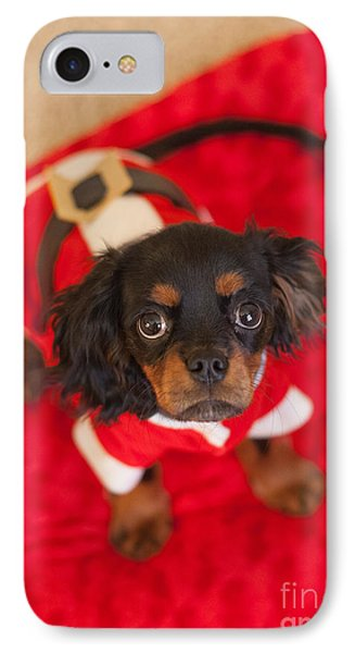 Christmas Puppy Phone Case by Kay Pickens