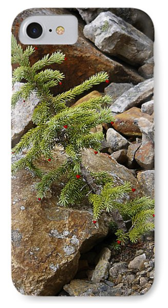 IPhone Case featuring the photograph Christmas Spirit by Rhonda McDougall
