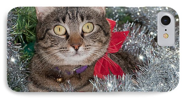 Christmas Tabby IPhone Case