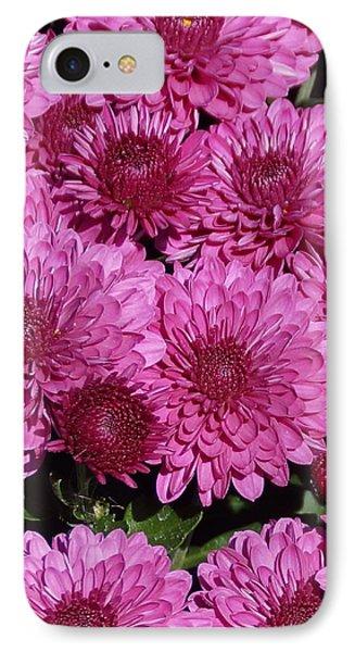 Chrysanthemum 1 IPhone Case