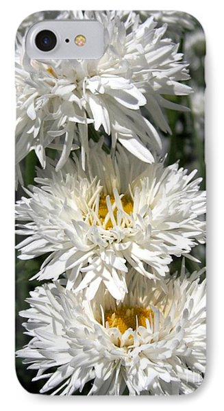 IPhone Case featuring the photograph Chrysanthemum Named Crazy Daisy by J McCombie