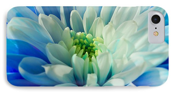 Chrysanthemum IPhone Case by Scott Carruthers