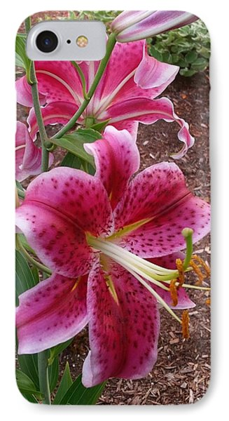 IPhone Case featuring the photograph Cibuloviny Flower by Rose Wang
