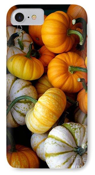 Cinderella Pumpkin Pile IPhone Case by Kerri Mortenson