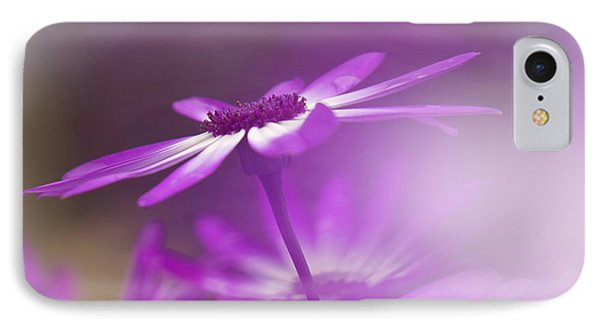 IPhone Case featuring the photograph Cineraria by Inge Riis McDonald