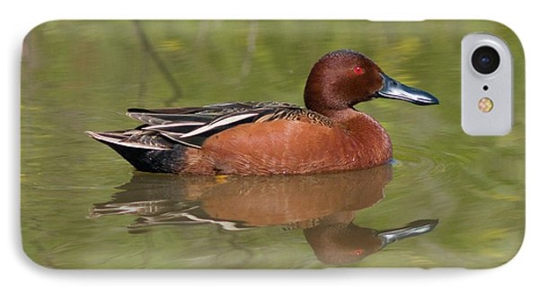 Cinnamon Teal IPhone Case
