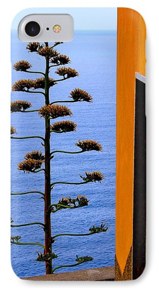 Cinque Terre View IPhone Case by Debi Demetrion