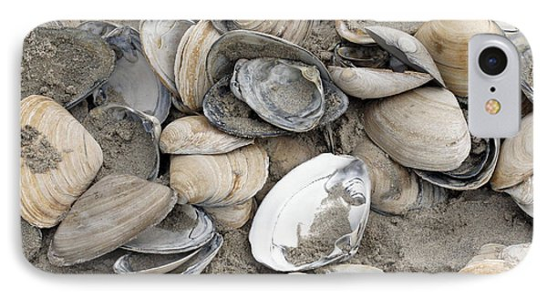 Clam Shell Beach  IPhone Case by Denise Pohl