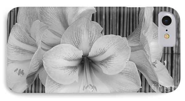 Classic Lilies Phone Case by Greg Patzer