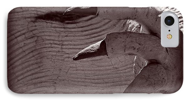 IPhone Case featuring the photograph Claws by Carolina Liechtenstein