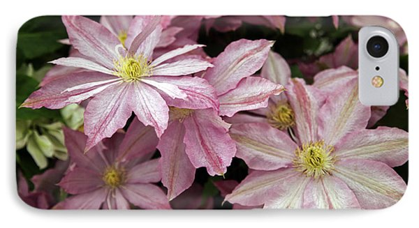 Clematis First Lady Phone Case by Ros Drinkwater