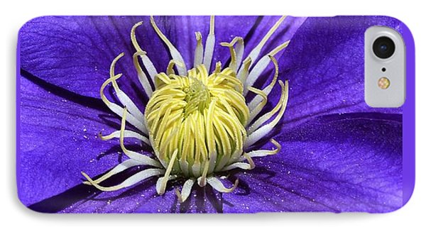 Clematis Queen Of The Climbers IPhone Case by Andrea Lazar