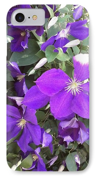 Clematis IPhone Case by Vickie G Buccini