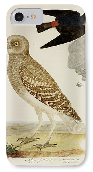 Cliff Swallow And Burrowing Owl IPhone Case by British Library