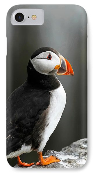 Cliff Top Puffin IPhone Case