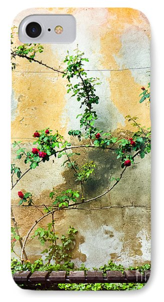 IPhone 7 Case featuring the photograph Climbing Rose Plant by Silvia Ganora