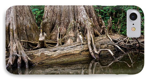 Clinging Cypress Phone Case by Christopher Holmes