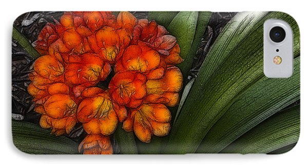 Clivia IPhone Case by Photographic Art by Russel Ray Photos
