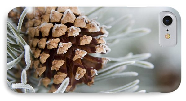 Close-up Image Of Frost-covered Pine IPhone Case by Charles Tribbey