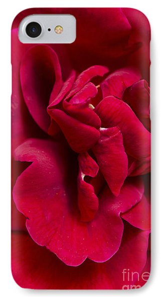 Close Up Of A Bright Red Rose IPhone Case by Perry Van Munster