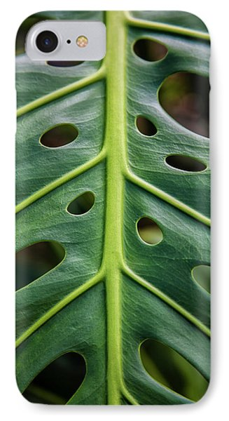 Close Up Of A Green Leaf With Holes IPhone Case by Scott Mead