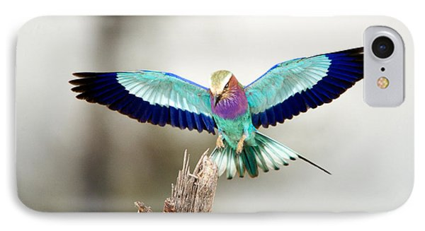 Close-up Of A Lilac-breasted Roller IPhone Case by Panoramic Images