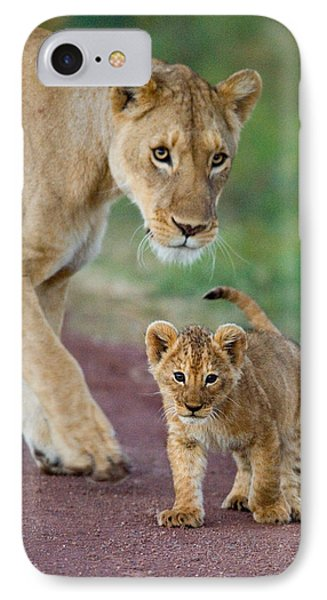 Close-up Of A Lioness And Her Cub IPhone Case by Panoramic Images