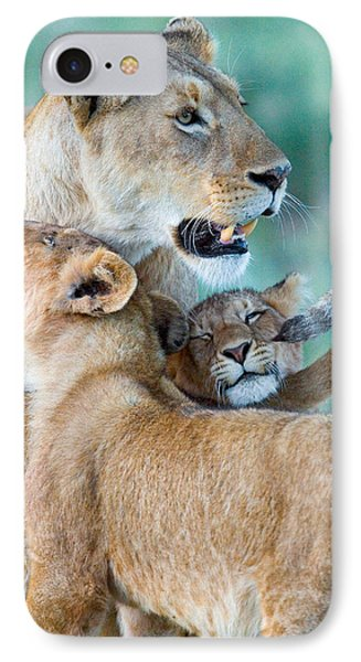 Close-up Of A Lioness And Her Two Cubs IPhone Case by Panoramic Images