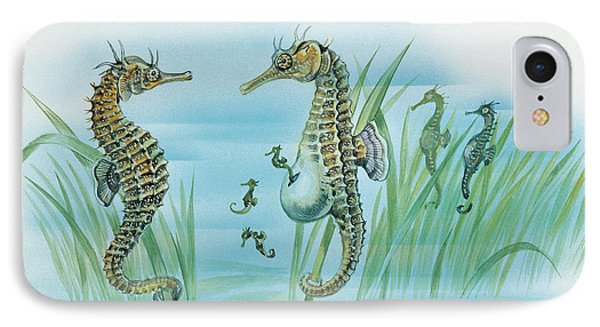 Close-up Of A Male Sea Horse Expelling Young Sea Horses IPhone Case by English School